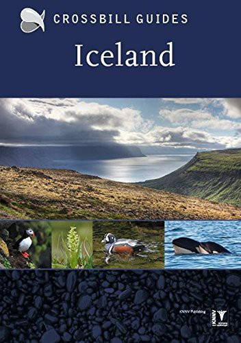 Crossbill Guides Iceland