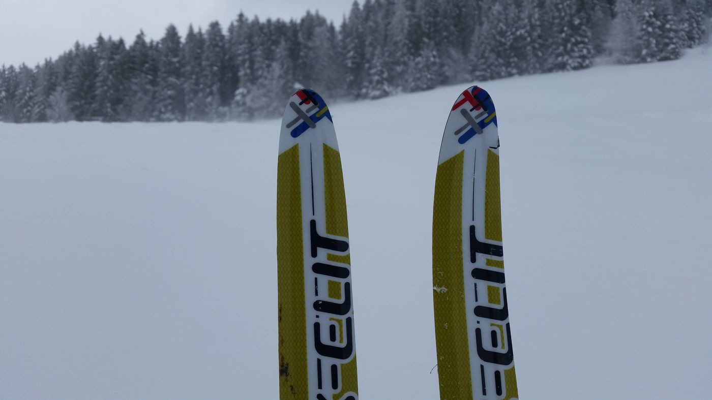 Ex-Elit Skis for Kids