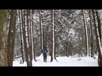 Skis Altai Hok